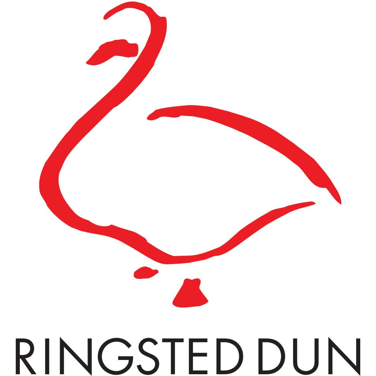 ringsted dun dyne Ringsted Dun   Svinedrengen (ekstra varm dyne)   Dynehuset ringsted dun dyne